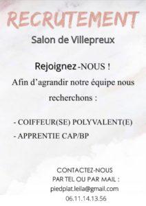 recrutement salon Villepreux